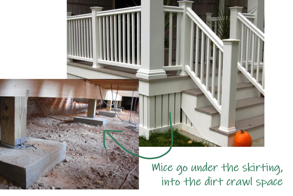 en skirting and a dirt crawlspace