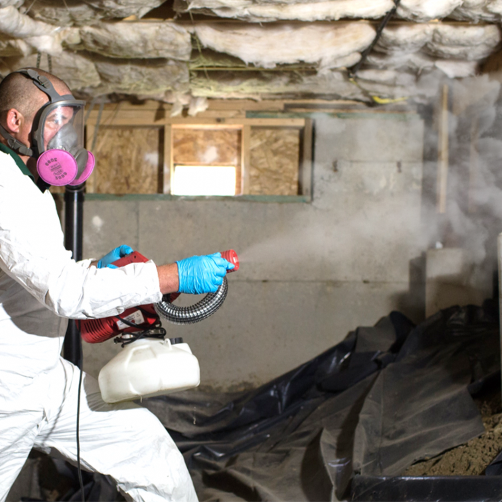 pest control in everett, craw space cleaning