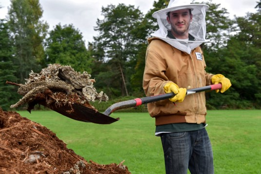 Pest control in Brier, man removing wasp nest in Washington