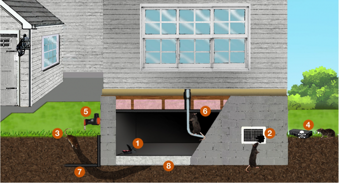 diagram of how to manage rodents in a crawl space, seattle home